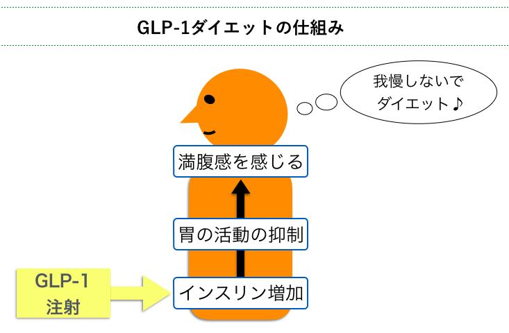 GLP-1ダイエットの仕組み