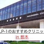 GLP-1ダイエット 栃木